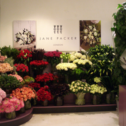 Gorgeous john lewis flowers artificial gorgeous john lewis flowers jane packer uk home page john lewis flowers oxford street sisterspd mightylinksfo
